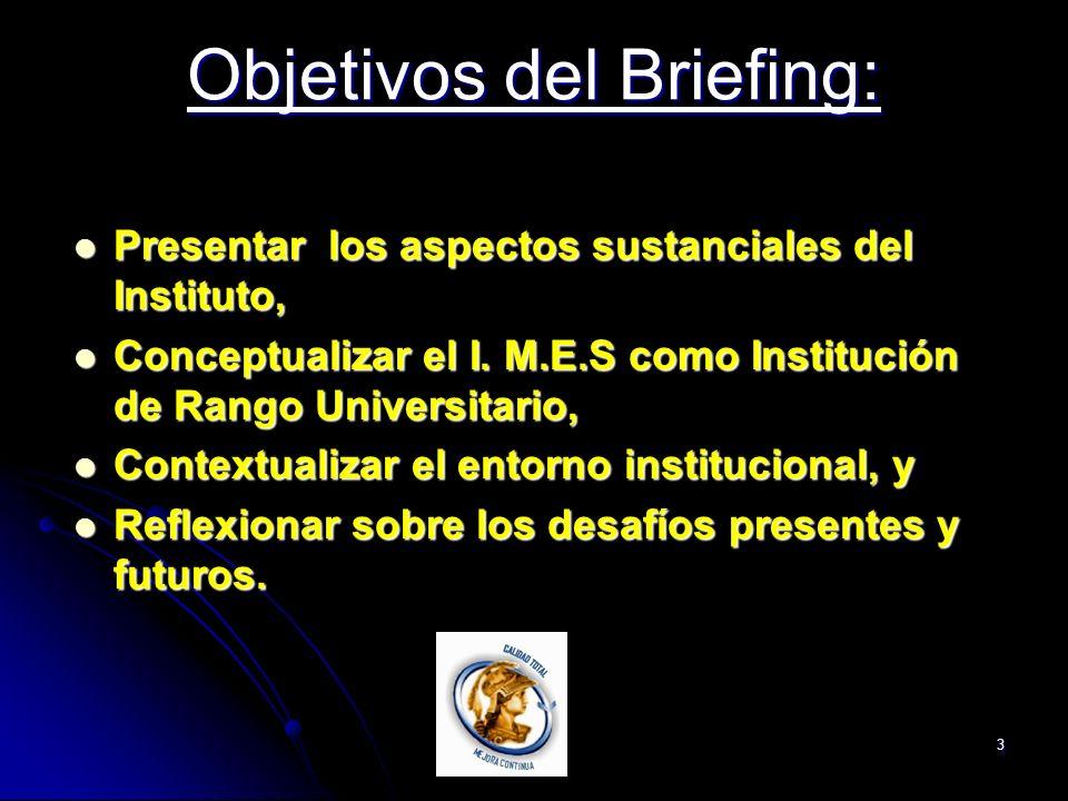 3 Objetivos del Briefing: Presentar los aspectos sustanciales del Instituto, Presentar los aspectos sustanciales del Instituto, Conceptualizar el I.