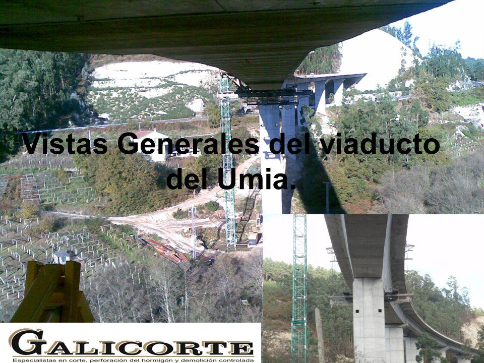 Vistas Generales del viaducto del Umia.