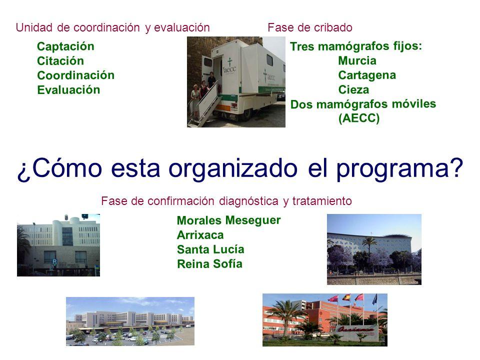 ¿Cómo esta organizado el programa? Unidad de coordinación y evaluación Captación Citación Coordinación Evaluación Fase de cribado Tres mamógrafos fijo