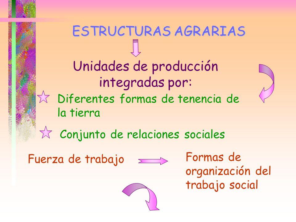 ESTRUCTURAS AGRARIAS Unidades de producción integradas por: Diferentes formas de tenencia de la tierra Conjunto de relaciones sociales Fuerza de traba