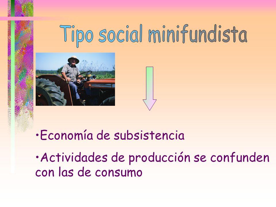 Economía de subsistencia Actividades de producción se confunden con las de consumo