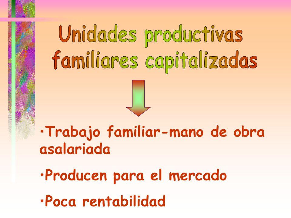 Trabajo familiar-mano de obra asalariada Producen para el mercado Poca rentabilidad