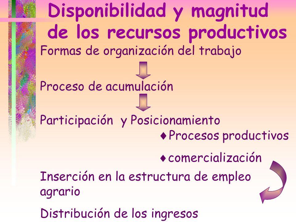 Disponibilidad y magnitud de los recursos productivos Formas de organización del trabajo Proceso de acumulación Participación y Posicionamiento Inserc