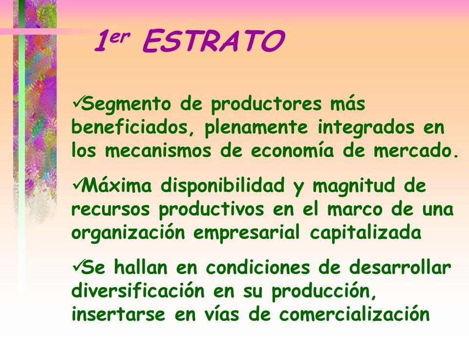 Segmento de productores más beneficiados, plenamente integrados en los mecanismos de economía de mercado. Máxima disponibilidad y magnitud de recursos