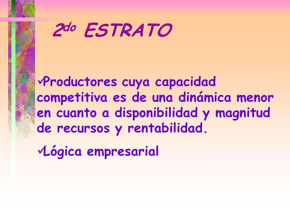 Productores cuya capacidad competitiva es de una dinámica menor en cuanto a disponibilidad y magnitud de recursos y rentabilidad. Lógica empresarial 2