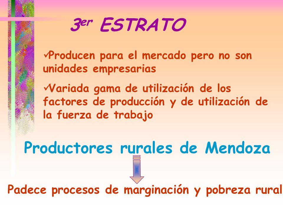 Producen para el mercado pero no son unidades empresarias Variada gama de utilización de los factores de producción y de utilización de la fuerza de t