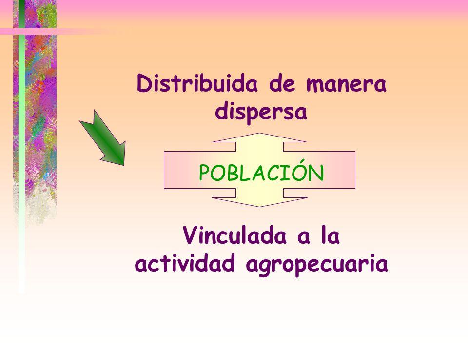 Distribuida de manera dispersa Vinculada a la actividad agropecuaria POBLACIÓN