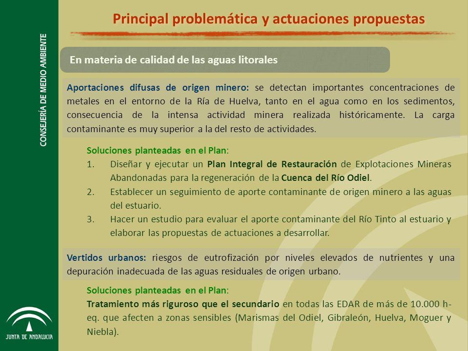 Principal problemática y actuaciones propuestas Aportaciones difusas de origen minero: se detectan importantes concentraciones de metales en el entorno de la Ría de Huelva, tanto en el agua como en los sedimentos, consecuencia de la intensa actividad minera realizada históricamente.