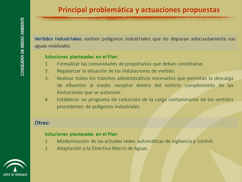 Principal problemática y actuaciones propuestas Vertidos industriales: existen polígonos industriales que no depuran adecuadamente sus aguas residuales.