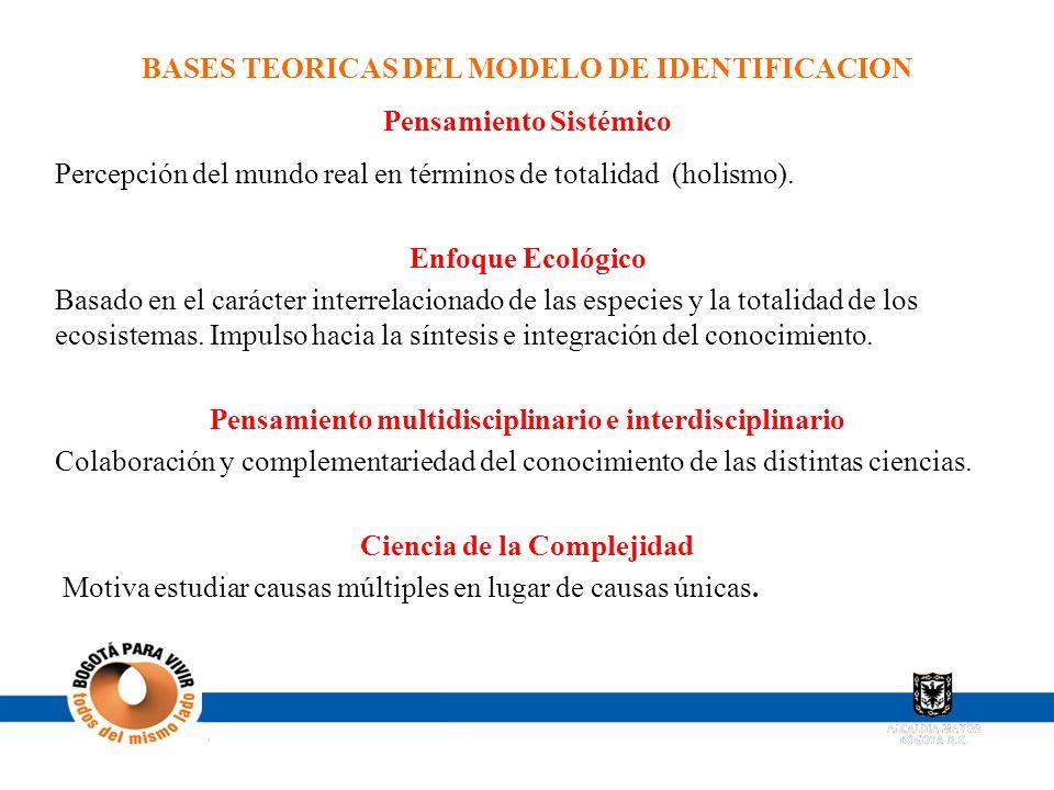 BASES TEORICAS DEL MODELO DE IDENTIFICACION Pensamiento Sistémico Percepción del mundo real en términos de totalidad (holismo). Enfoque Ecológico Basa