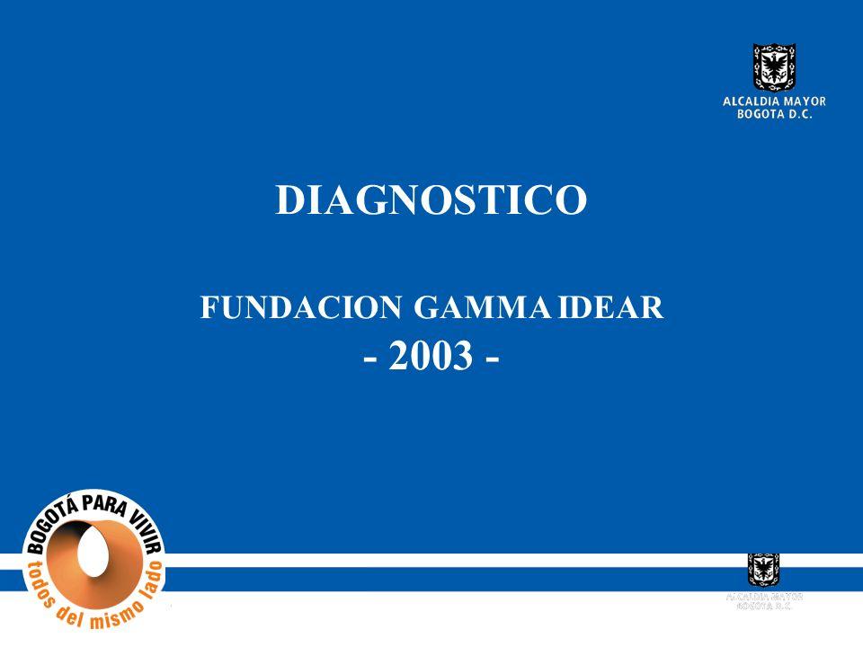DIAGNOSTICO FUNDACION GAMMA IDEAR - 2003 -