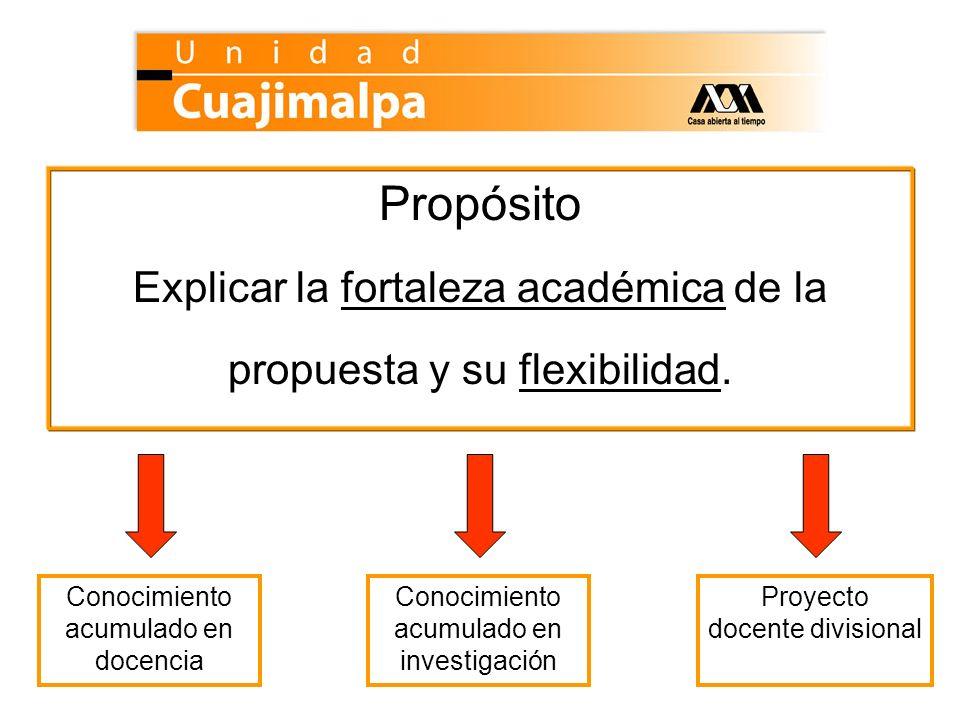 Propósito Explicar la fortaleza académica de la propuesta y su flexibilidad. Conocimiento acumulado en docencia Conocimiento acumulado en investigació