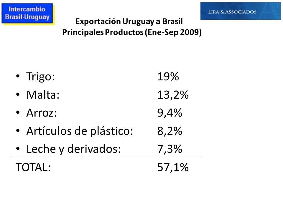 Exportación Uruguay a Brasil Principales Productos (Ene-Sep 2009) Trigo: 19% Malta: 13,2% Arroz:9,4% Artículos de plástico: 8,2% Leche y derivados:7,3