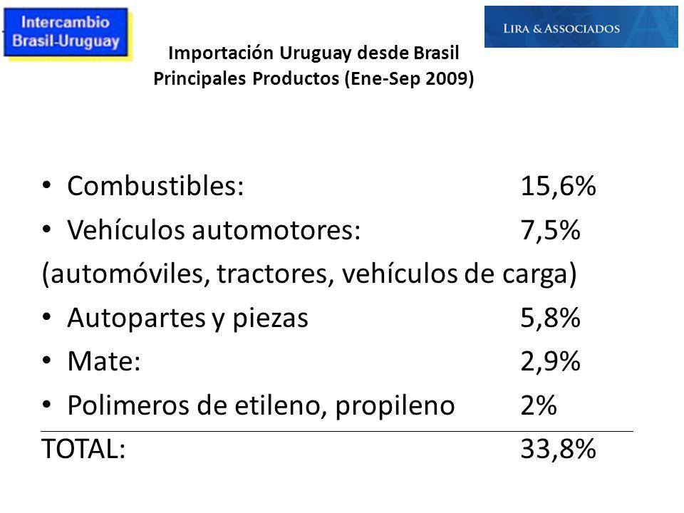 Importación Uruguay desde Brasil Principales Productos (Ene-Sep 2009) Combustibles:15,6% Vehículos automotores:7,5% (automóviles, tractores, vehículos