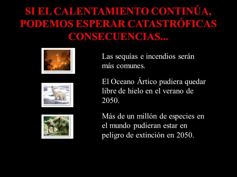 Las sequías e incendios serán más comunes.
