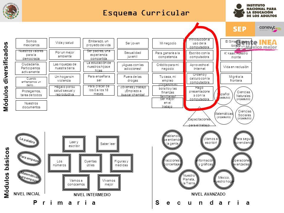 Esquema Curricular Español (propedéutico) Matemáticas (propedéutico) Ciencias Sociales (propedéutico) Ciencias Naturales (propedéutico) Módulos divers