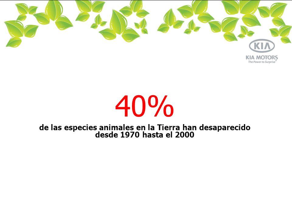 40% de las especies animales en la Tierra han desaparecido desde 1970 hasta el 2000