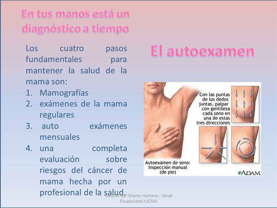 Los cuatro pasos fundamentales para mantener la salud de la mama son: 1.Mamografías 2.exámenes de la mama regulares 3. auto exámenes mensuales 4.una c