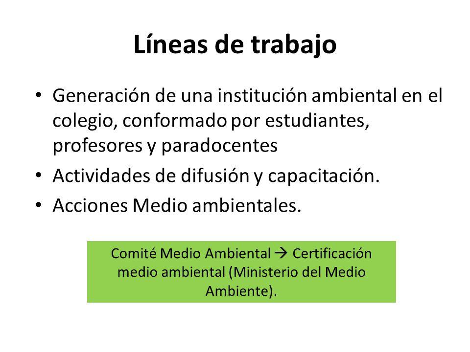 Líneas de trabajo Generación de una institución ambiental en el colegio, conformado por estudiantes, profesores y paradocentes Actividades de difusión