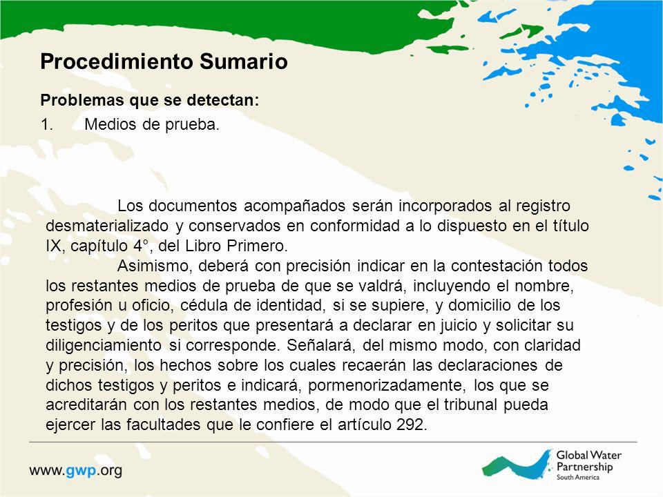 Procedimiento Sumario Problemas que se detectan: 1.Medios de prueba. Los documentos acompañados serán incorporados al registro desmaterializado y cons