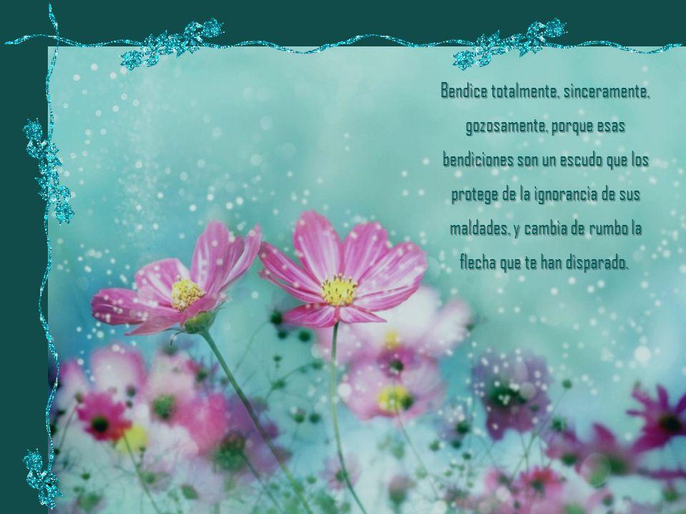 Cuando alguien te muestre la menor agresividad, cólera o falta de bondad, responde con una bendición silenciosa.
