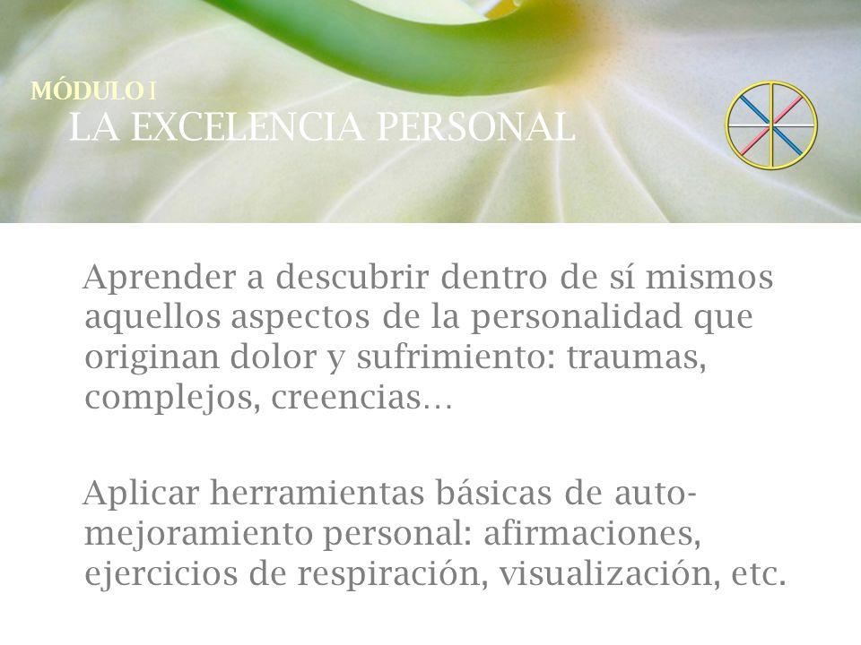 LA EXCELENCIA PERSONAL 1.Cómo sanar la personalidad.