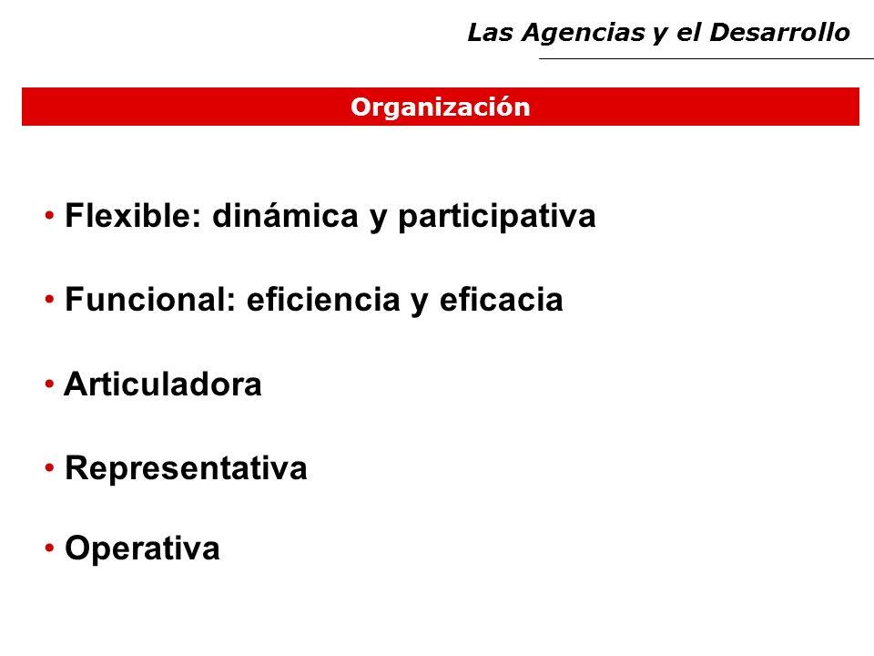 Organización Flexible: dinámica y participativa Funcional: eficiencia y eficacia Articuladora Representativa Operativa Las Agencias y el Desarrollo