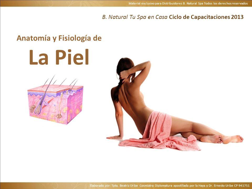 Material exclusivo para Distribuidores B. Natural Spa Todos los derechos reservados B. Natural Tu Spa en Casa Ciclo de Capacitaciones 2013 Anatomía y