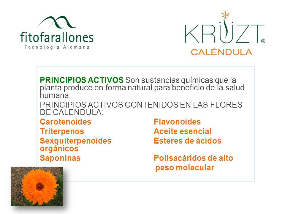 PRINCIPIOS ACTIVOS Son sustancias químicas que la planta produce en forma natural para beneficio de la salud humana. PRINCIPIOS ACTIVOS CONTENIDOS EN