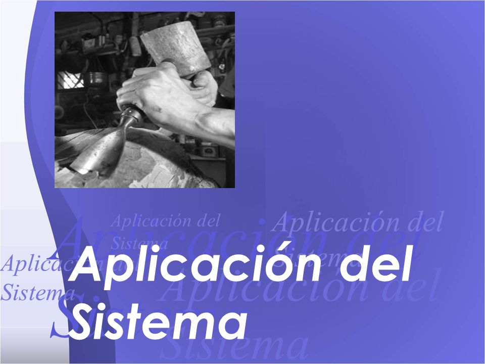 Aplicación del Sistema Aplicación del Sistema Aplicación del Sistema Aplicación del Sistema