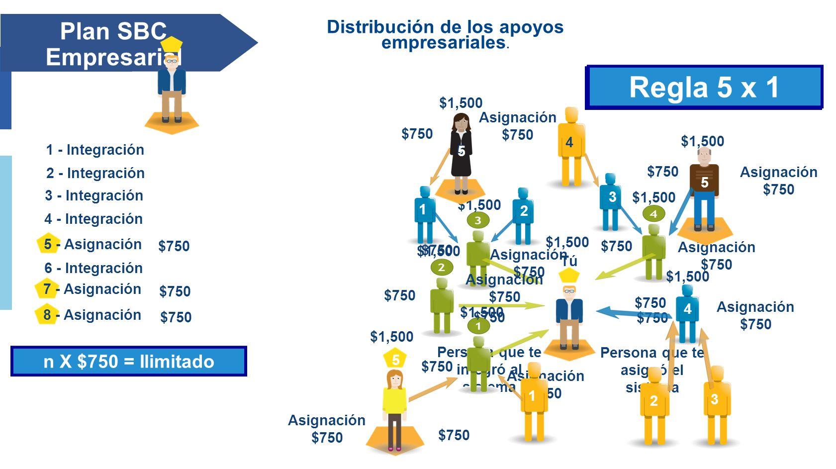Distribución de los apoyos empresariales.