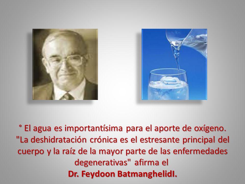 ° El agua es importantísima para el aporte de oxígeno.
