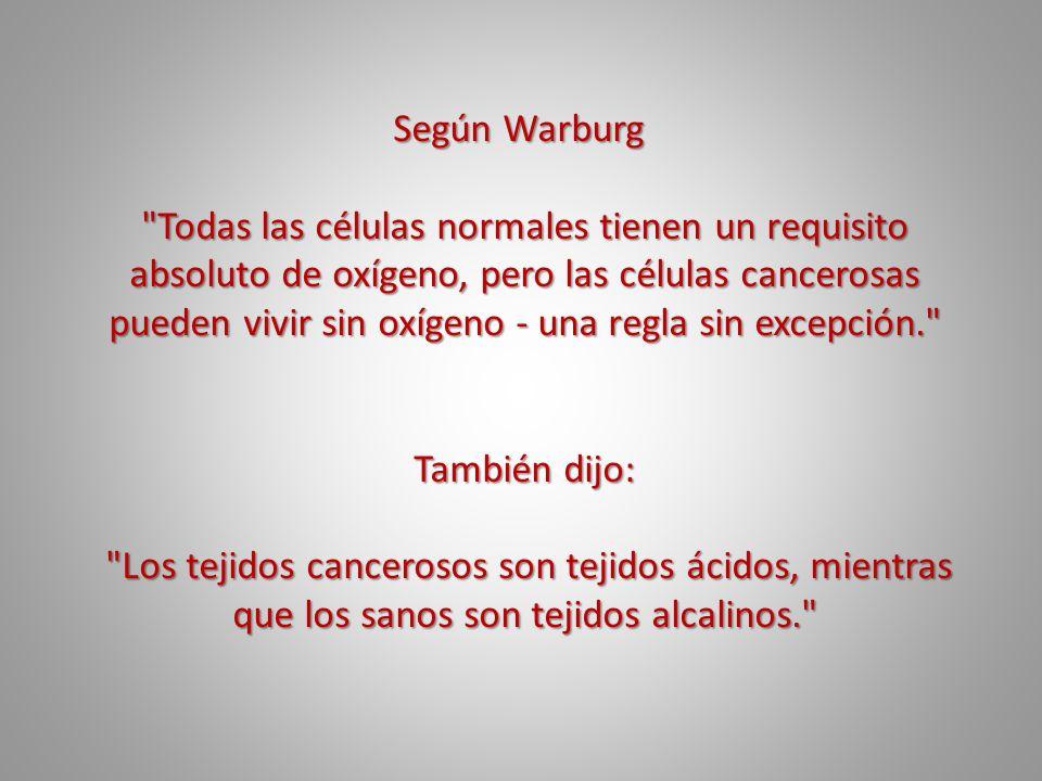 Según Warburg Según Warburg