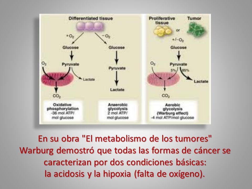 También descubrió que las células cancerosas son anaerobicas (no respiran oxígeno) y NO PUEDEN sobrevivir en presencia de altos niveles de oxígeno; en cambio, sobreviven gracias a la GLUCOSA siempre y cuando el entorno esté libre de oxígeno...