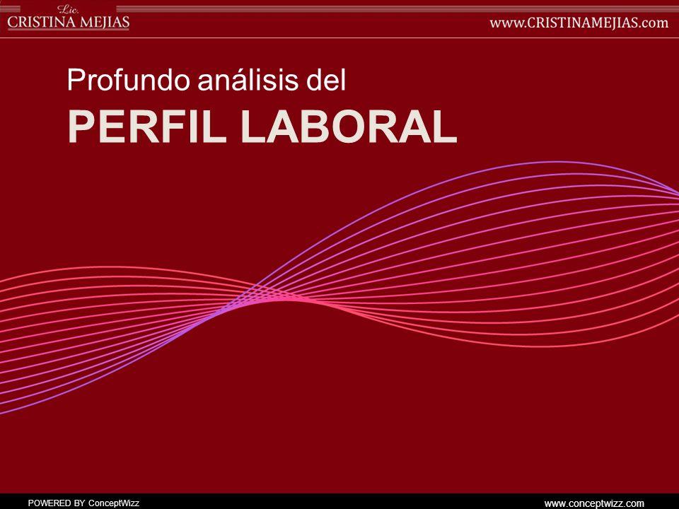 POWERED BY ConceptWizz www.conceptwizz.com PERFIL LABORAL Profundo análisis del