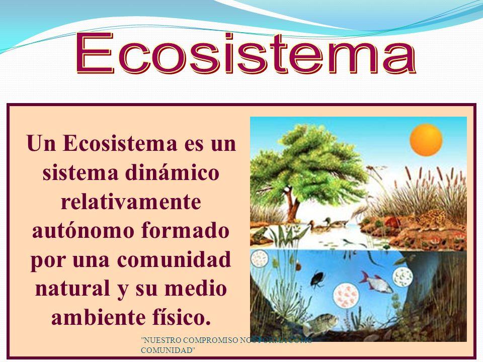 Un Ecosistema es un sistema dinámico relativamente autónomo formado por una comunidad natural y su medio ambiente físico.