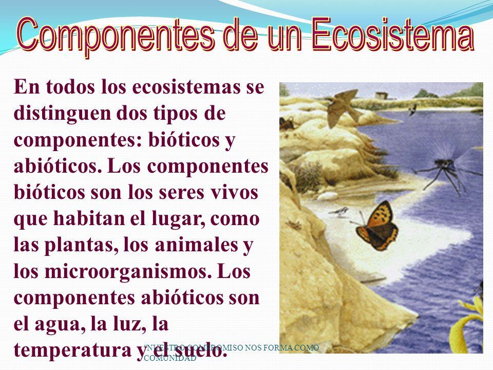 En todos los ecosistemas se distinguen dos tipos de componentes: bióticos y abióticos.