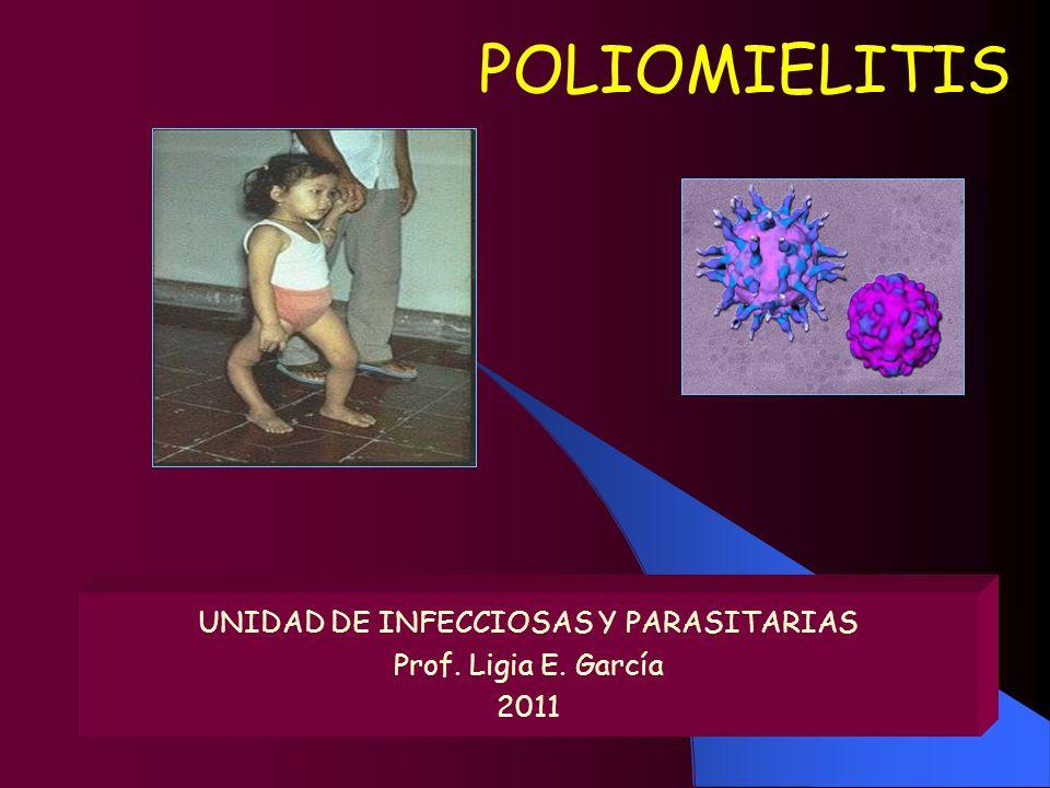 POLIOMIELITIS UNIDAD DE INFECCIOSAS Y PARASITARIAS Prof. Ligia E. García 2011