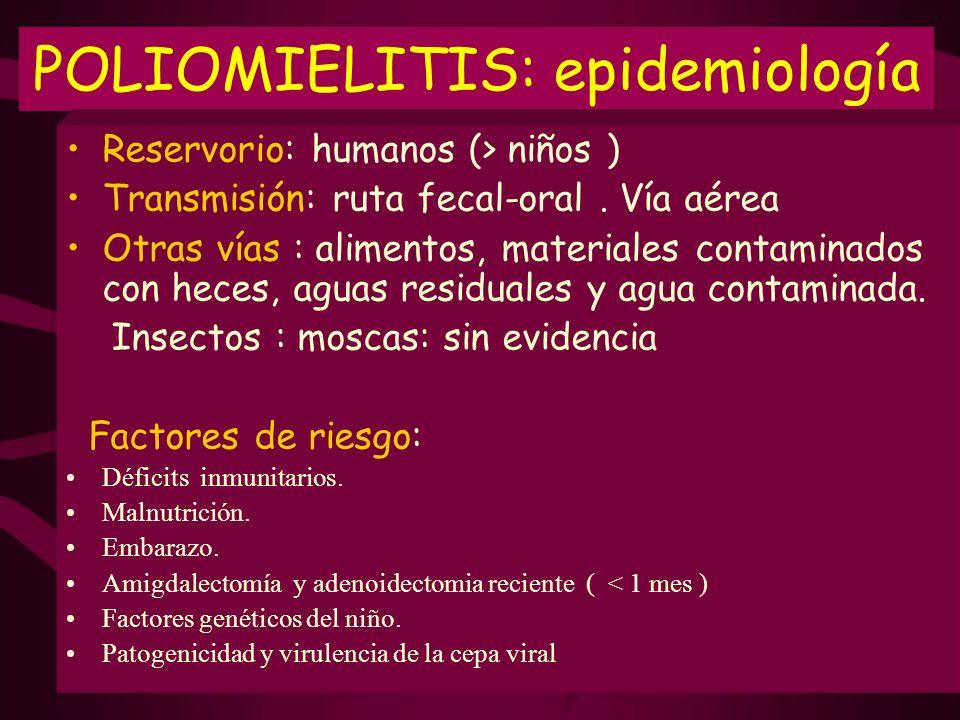 POLIOMIELITIS: epidemiología Reservorio: humanos (> niños ) Transmisión: ruta fecal-oral. Vía aérea Otras vías : alimentos, materiales contaminados co
