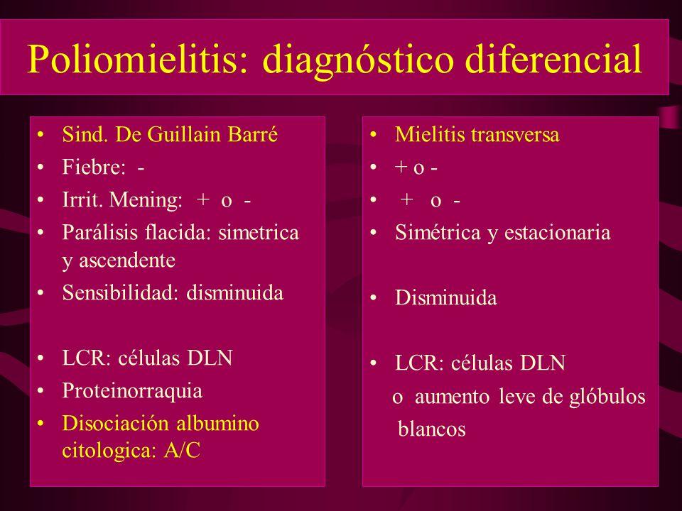 Poliomielitis: diagnóstico diferencial Sind. De Guillain Barré Fiebre: - Irrit. Mening: + o - Parálisis flacida: simetrica y ascendente Sensibilidad: