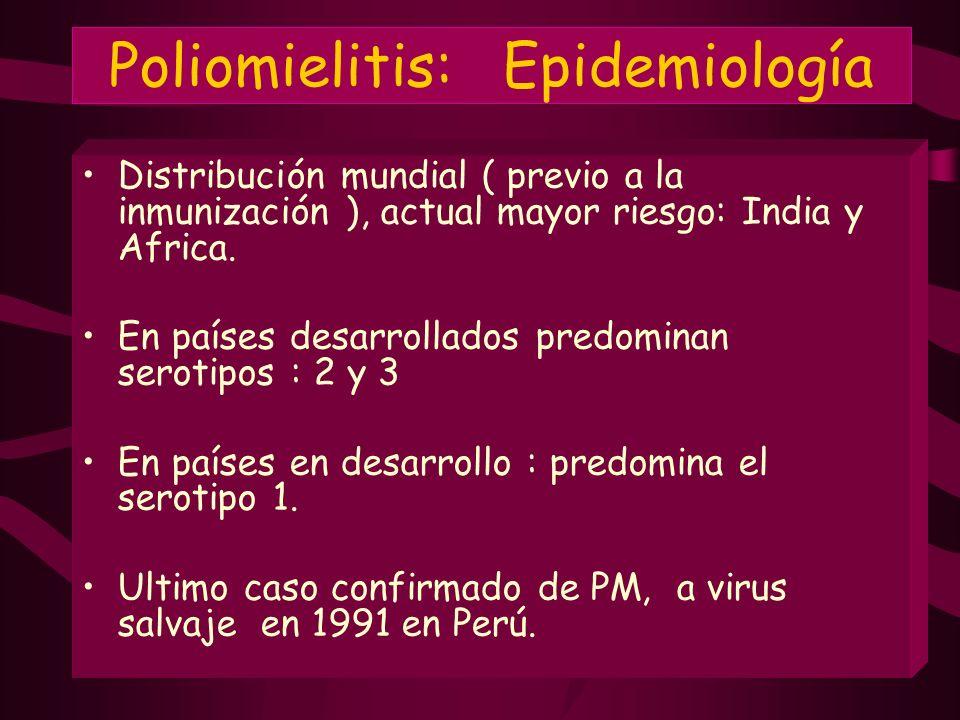 Poliomielitis: Epidemiología Distribución mundial ( previo a la inmunización ), actual mayor riesgo: India y Africa. En países desarrollados predomina