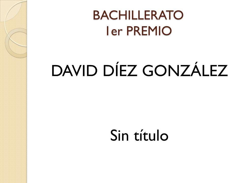 BACHILLERATO 1er PREMIO DAVID DÍEZ GONZÁLEZ Sin título