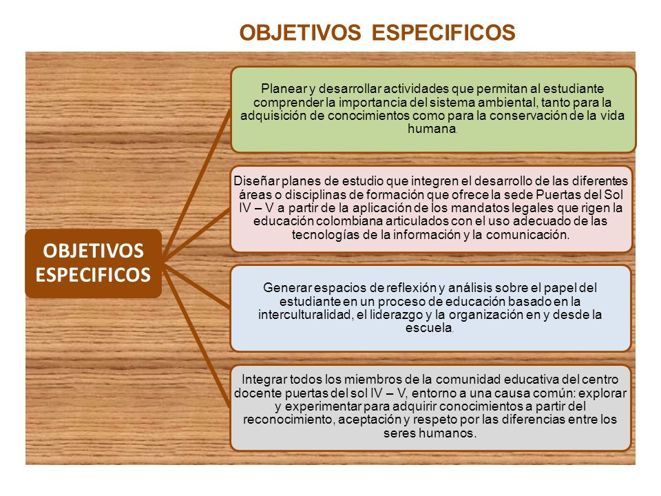 OBJETIVOS ESPECIFICOS Planear y desarrollar actividades que permitan al estudiante comprender la importancia del sistema ambiental, tanto para la adqu
