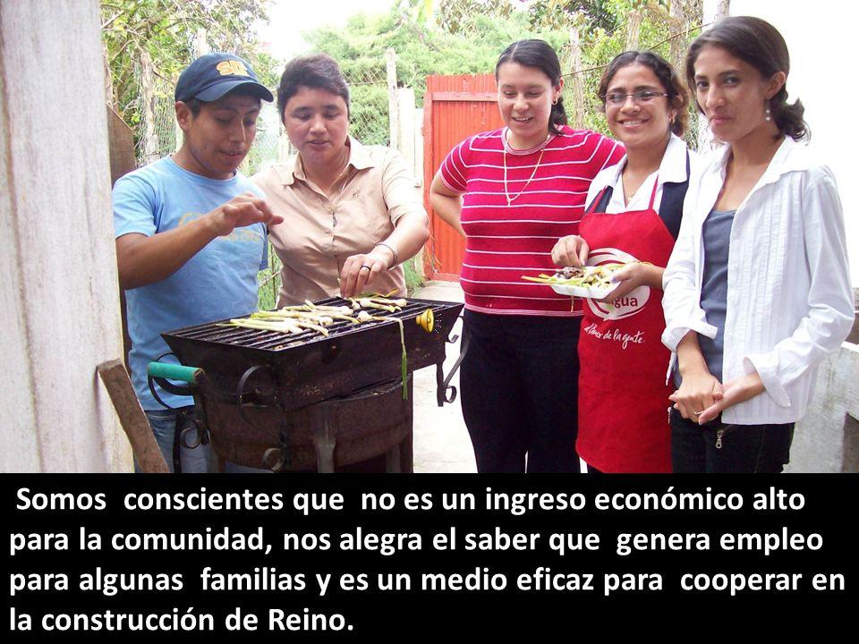 Muy importantes han sido los trabajos que se han elaborado a favor de la conciencia ecológica a través de diferentes organizaciones que la promueven.