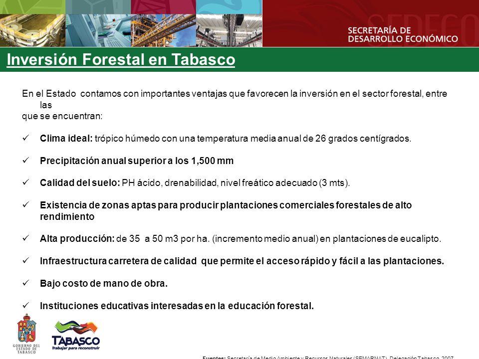 En el Estado contamos con importantes ventajas que favorecen la inversión en el sector forestal, entre las que se encuentran: Clima ideal: trópico húmedo con una temperatura media anual de 26 grados centígrados.