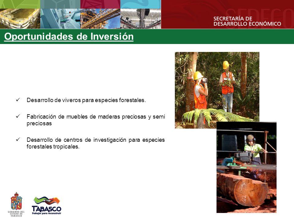 Oportunidades de Inversión Desarrollo de viveros para especies forestales. Fabricación de muebles de maderas preciosas y semi preciosas Desarrollo de