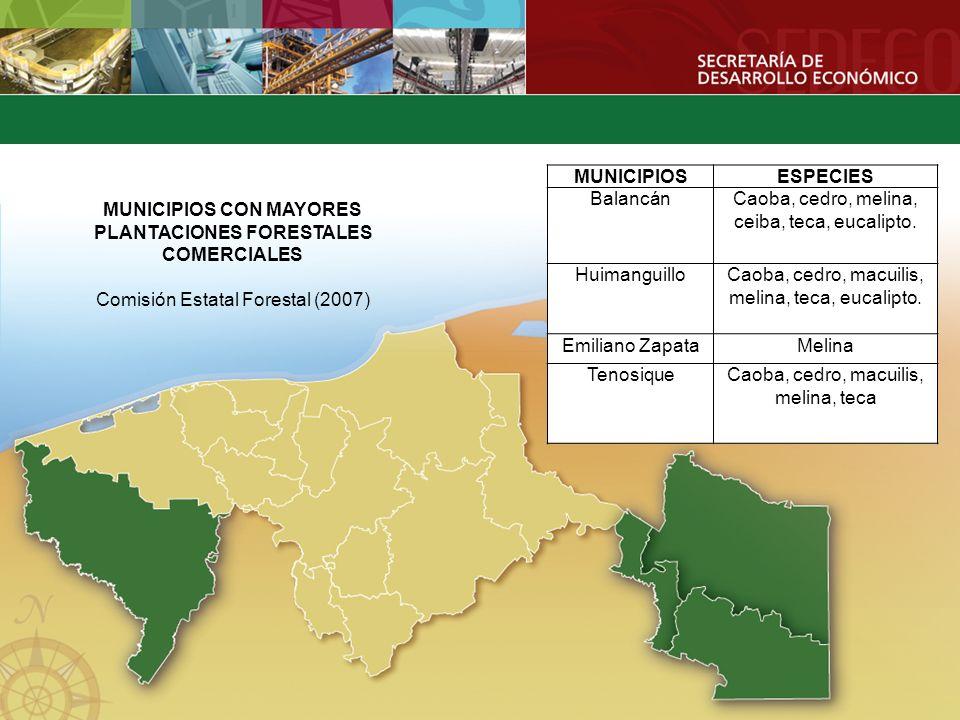 MUNICIPIOS CON MAYORES PLANTACIONES FORESTALES COMERCIALES Comisión Estatal Forestal (2007) MUNICIPIOSESPECIES BalancánCaoba, cedro, melina, ceiba, te