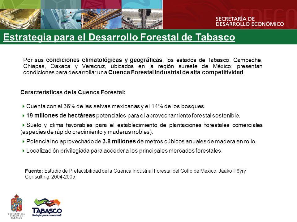 Por sus condiciones climatológicas y geográficas, los estados de Tabasco, Campeche, Chiapas, Oaxaca y Veracruz, ubicados en la región sureste de México; presentan condiciones para desarrollar una Cuenca Forestal Industrial de alta competitividad.
