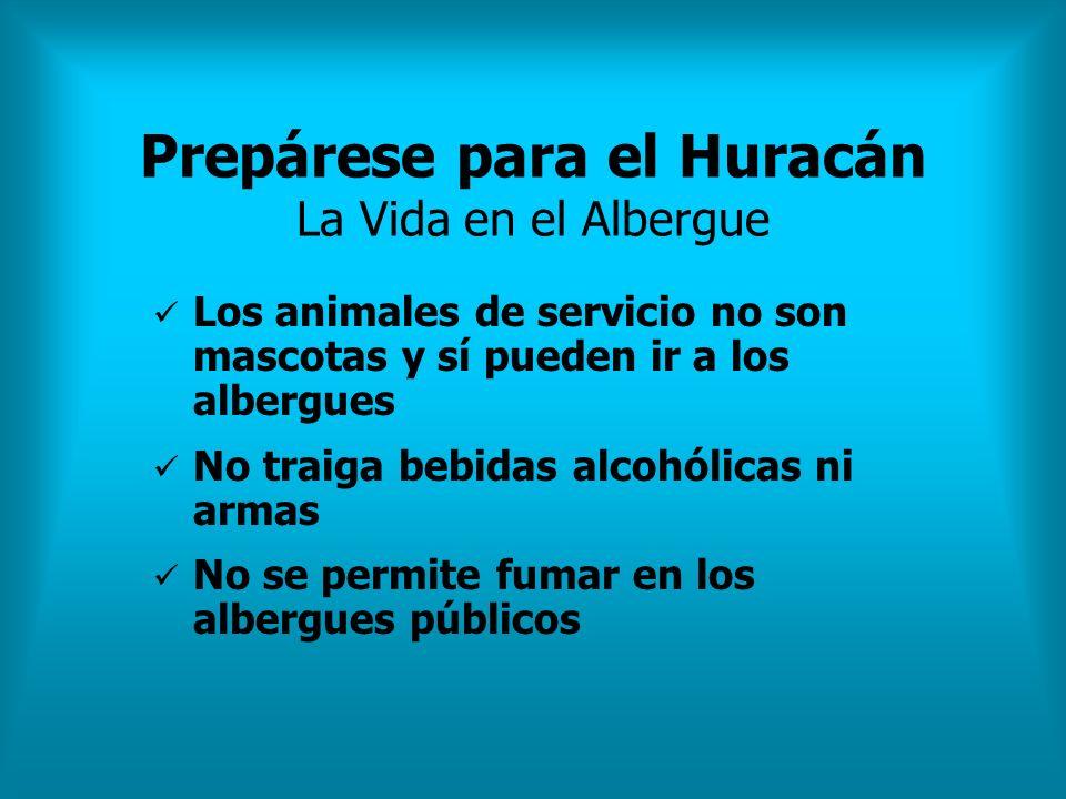Prepárese para el Huracán La Vida en el Albergue Los animales de servicio no son mascotas y sí pueden ir a los albergues No traiga bebidas alcohólicas