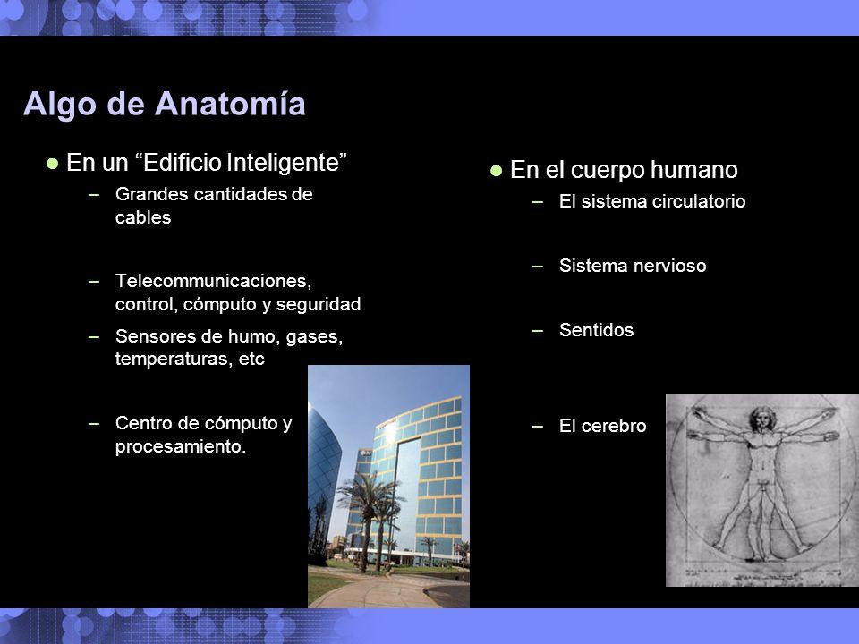 Algo de Anatomía En un Edificio Inteligente –Grandes cantidades de cables –Telecommunicaciones, control, cómputo y seguridad –Sensores de humo, gases,